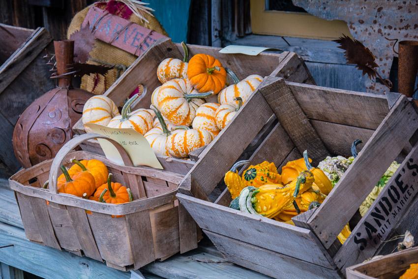 Verschiede Kürbissorten auf einem Farmers Market in Vermont